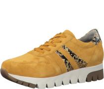 Sneakers, Animal, Plateau,