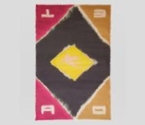 Farbblock-Schal mit Pegaso