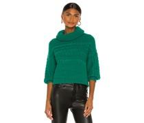 Francine Rollkragenpullover Pullover