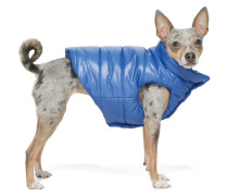 Blue Poldo Dog Couture Edition Insulated