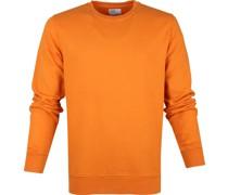 Sweater Organic Orange