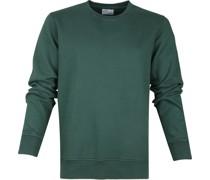 Sweater Organic Grün