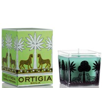 Fico d'India Square Candle