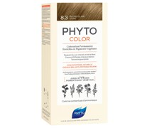 Hair Colour by color - 8.3 Light Golden Blonde 180g