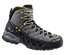 Herren Trekkingschuhe Alp Flow GTX Surround