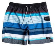 Swell Volley 17 Boardshorts tarmac