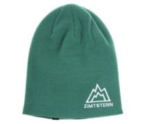 Zetaz Beanie dark green