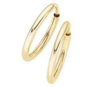 Creolen hochglanz, Gold 585