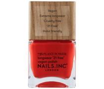 Nagellack Nagel-Make-up 14ml Kastanie