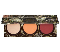 Rouge Gesichts-Make-up