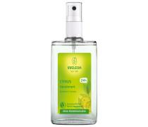 100 ml Deodorant Spray 100ml