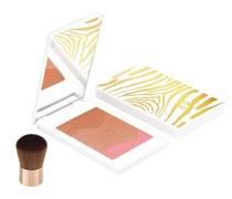 Teint Make-up Rouge 11g Rosegold
