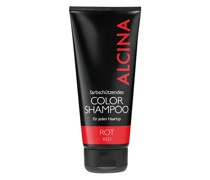 Color-Shampoo Rot