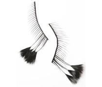 Wimpern Bird