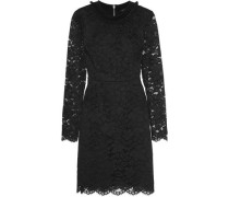Velvet-trimmed guipure lace mini dress