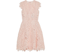 Ruffle-trimmed Corded Lace Dress