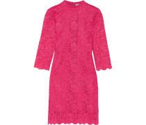 Janelle Lace Mini Dress Fuchsia