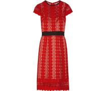 Ilissa Guipure Lace Dress Rot