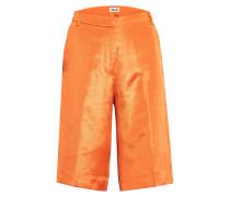 Shorts NICHA
