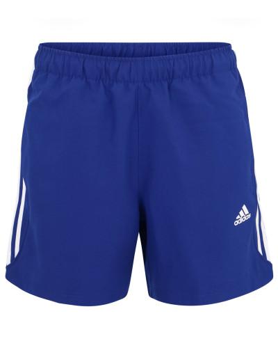 Shorts, schnelltrocknend, atmungsaktiv, Mesh-Futter