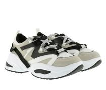 Sneakers Fay Sneaker