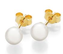 Ohrringe Stud Earrings Cultured Akoya Pearl 6,5 Gold