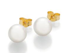 Ohrringe Stud Earrings Cultured Akoya Pearl 8,5 Gold