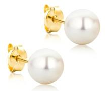 Ohrringe 14KT Freshwater Pearl Earring