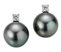 Ohrringe Stud Earrings Tahiti Pearls