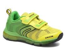 J Android B. C J6244C Sneaker in grün