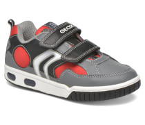 J Gregg B J6447B Sneaker in grau