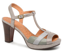Ecai Pumps in grau