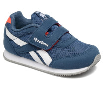 Royal Cljog 2Rs Kc Sneaker in blau