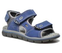 Damir Sandalen in blau
