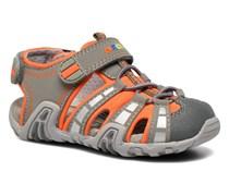 B Sandal Kraze B6224B Sandalen in grau